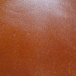 Biblia UBG F2 Skóra miękka, zamek, indeks, findik